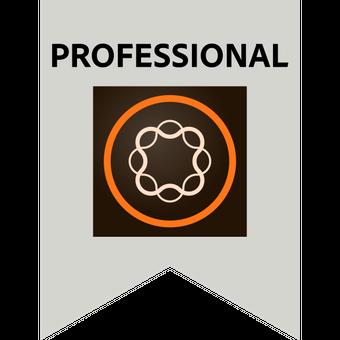 Adobe AEM Professional Certified